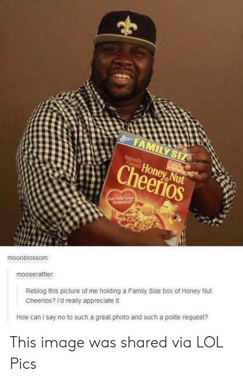 Polite: FAMILY SIZ  Naturally  FLored  Honey Nut  Cheerios  Can Help Lower  Cholesterol  moonblossom  mooserattler  Reblog this picture of me holding a Family Size box of Honey Nut  Cheerios? I'd really appreciate it.  How can I say no to such a great photo and such a polite request? This image was shared via LOL Pics