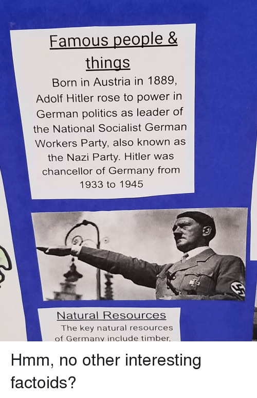 the many reasons for the rise of adolf hitler to power The main reason for hitler's rise to power was due to the treaty of versailles argue your case the main contributing reason for adolf hitler's rise to power in germany was due to the treaty of versailles, which saw germany face territorial losses, reparations for the damage caused by ww1, and the blame for starting ww1.