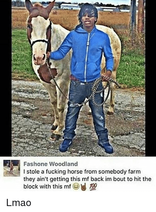 woodland: Fashone Woodland  stole a fucking horse from somebody farm  I stole a fucking horse from somebody farm  they ain't getting this mf back im bout to hit the  block with this mf Lmao