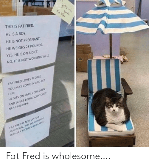 Fat: Fat Fred is wholesome….