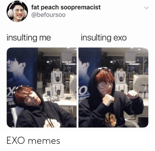 Exo Memes: fat peach soopremacist  @befoursoo  insulting me  insulting exo  X  ng  ng EXO memes