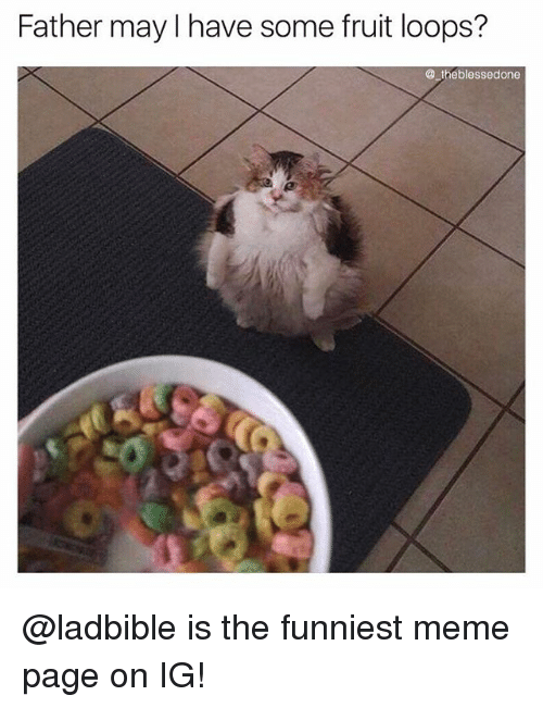 fruit loops: Father may I have some fruit loops?  @ theblessedone @ladbible is the funniest meme page on IG!