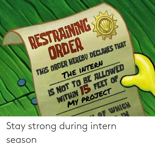 Of My: fb.me/objcmemes  RESTRAINING  ORDER  THIS ORDER HEREBY DECLARES THAT  THE INTERN  IS NOT TO BE ALLOWED  WITHIN 15 FEET OF  MY PROJECT  OF WHICH Stay strong during intern season