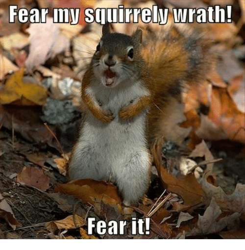 Fear It: Fear-iny squirely wrath  Fear it!