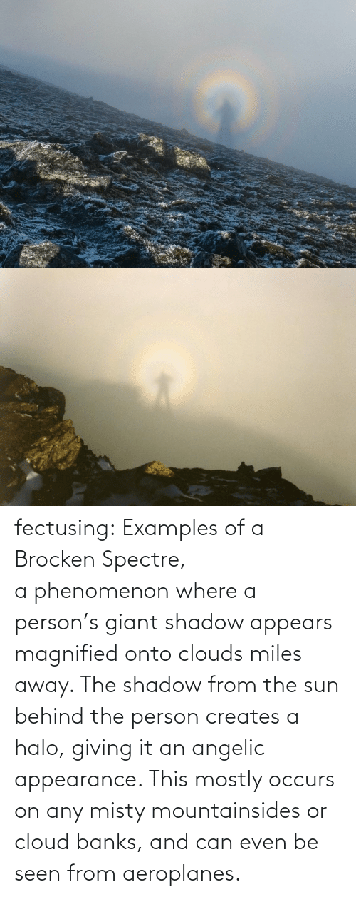 person: fectusing: Examples of a Brocken Spectre, a phenomenon where a person's giant shadow appears magnified onto clouds miles away. The shadow from the sun behind the person creates a halo, giving it an angelic appearance. This mostly occurs on any misty mountainsides or cloud banks, and can even be seen from aeroplanes.