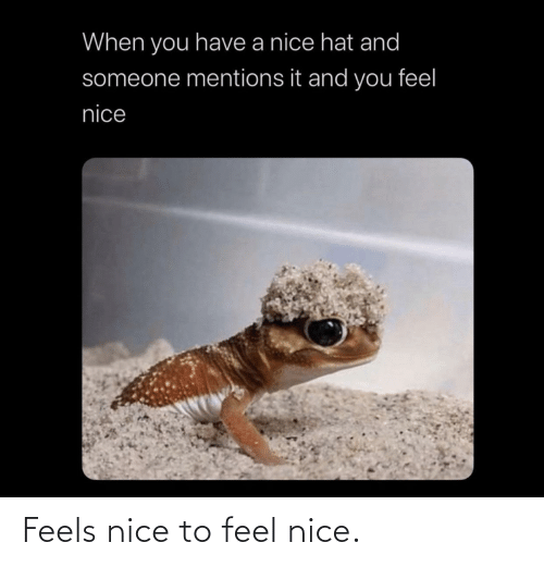 feel: Feels nice to feel nice.
