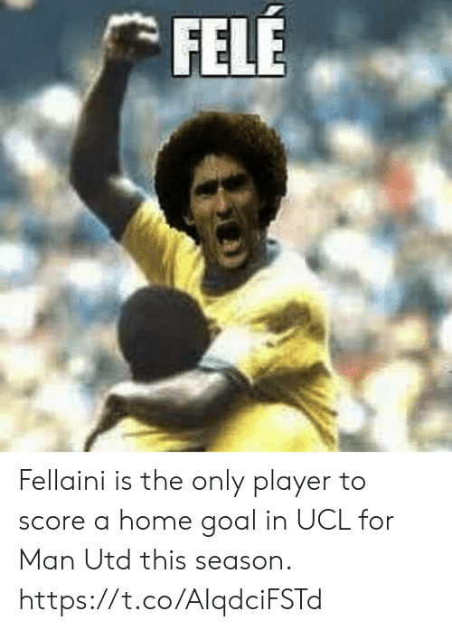Memes, Goal, and Home: FELE Fellaini is the only player to score a home goal in UCL for Man Utd this season. https://t.co/AIqdciFSTd