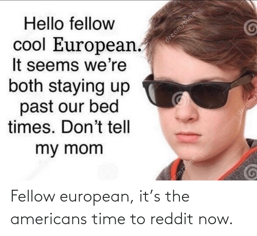 the americans: Fellow european, it's the americans time to reddit now.