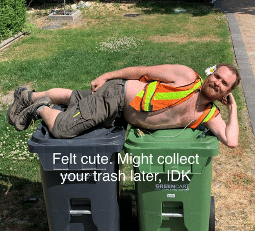 Cute, Dank, and Food: Felt cute. Might collect  your trash later, IDK  GREENCART  FOOD &AD s
