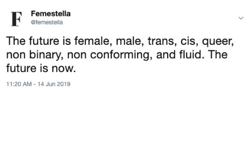 The Future Is Now: Femestella  @femestella  The future is female, male, trans, cis, queer  non binary, non conforming, and fluid. The  future is now  11:20 AM - 14 Jun 2019