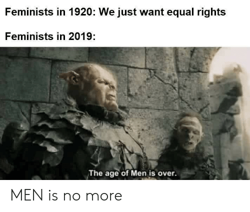 Equal Rights: Feminists in 1920: We just want equal rights  Feminists in 2019:  The age of Men is over. MEN is no more