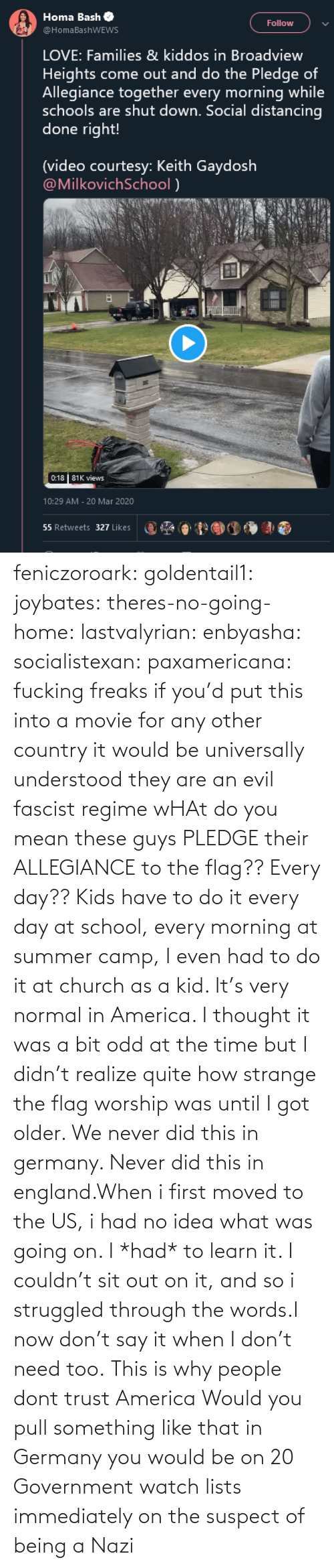 Evil: feniczoroark:  goldentail1:  joybates:  theres-no-going-home:  lastvalyrian:  enbyasha:  socialistexan:  paxamericana: fucking freaks       if you'd put this into a movie for any other country it would be universally understood they are an evil fascist regime    wHAt do you mean these guys PLEDGE their ALLEGIANCE to the flag?? Every day??   Kids have to do it every day at school, every morning at summer camp, I even had to do it at church as a kid. It's very normal in America. I thought it was a bit odd at the time but I didn't realize quite how strange the flag worship was until I got older.    We never did this in germany. Never did this in england.When i first moved to the US, i had no idea what was going on. I *had* to learn it. I couldn't sit out on it, and so i struggled through the words.I now don't say it when I don't need too.   This is why people dont trust America    Would you pull something like that in Germany you would be on 20 Government watch lists immediately on the suspect of being a Nazi