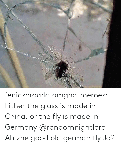 fly: feniczoroark:  omghotmemes:  Either the glass is made in China, or the fly is made in Germany   @randomnightlord    Ah zhe good old german fly Ja?