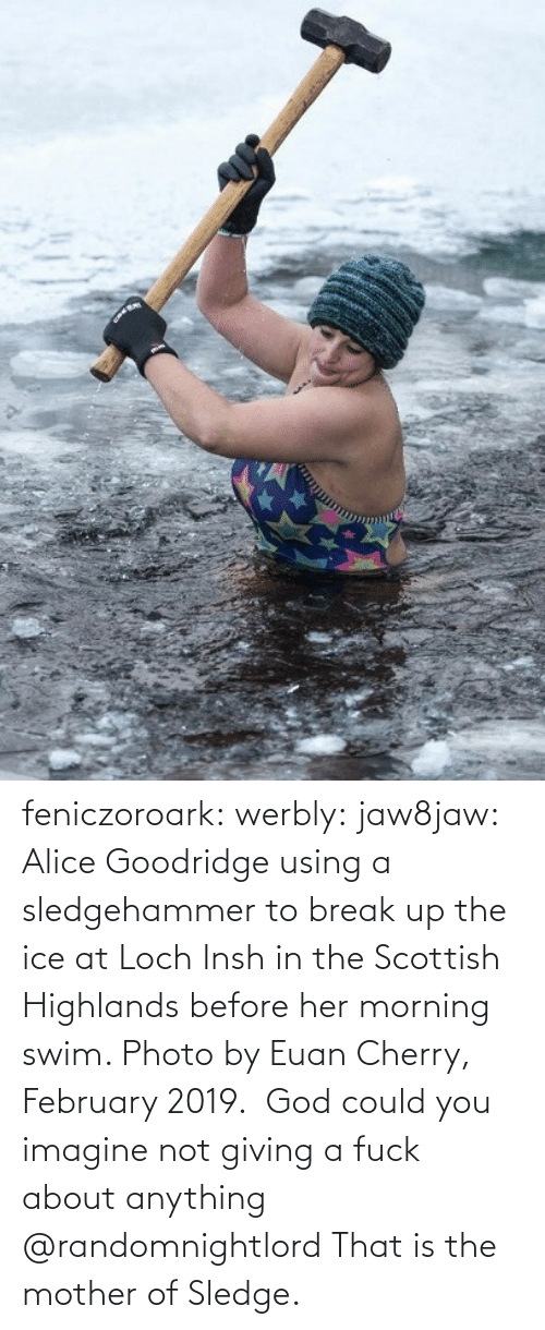 key: feniczoroark:  werbly:  jaw8jaw: Alice Goodridge using a sledgehammer to break up the ice at Loch Insh in the Scottish Highlands before her morning swim. Photo by Euan Cherry, February 2019.  God could you imagine not giving a fuck about anything    @randomnightlord    That is the mother of Sledge.