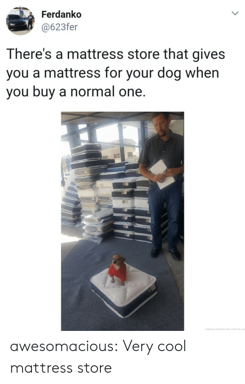 very cool: Ferdanko  @623fer  LL  There's a mattress store that gives  you a mattress for your dog when  you buy a normal one.  made by someone who cares for you  > awesomacious:  Very cool mattress store