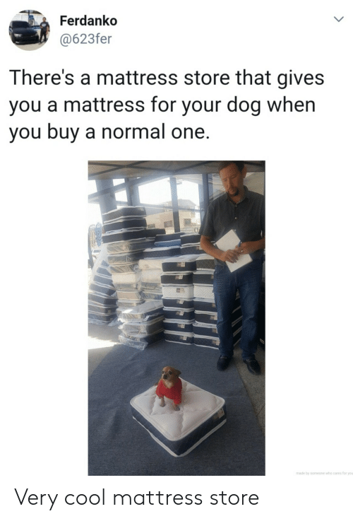very cool: Ferdanko  @623fer  LL  There's a mattress store that gives  you a mattress for your dog when  you buy a normal one.  made by someone who cares for you  > Very cool mattress store