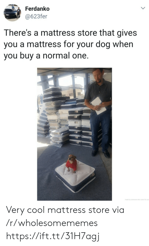 very cool: Ferdanko  @623fer  LL  There's a mattress store that gives  you a mattress for your dog when  you buy a normal one.  made by someone who cares for you  > Very cool mattress store via /r/wholesomememes https://ift.tt/31H7agj