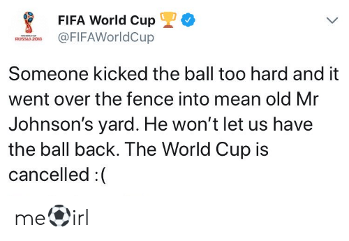 Fifa, World Cup, and Mean: FIFA World CupL  FIFAWorldCup  Someone kicked the ball too hard and it  went over the fence into mean old Mr  Johnson's yard. He won't let us have  the ball back. The World Cup is  cancelled :( me⚽irl
