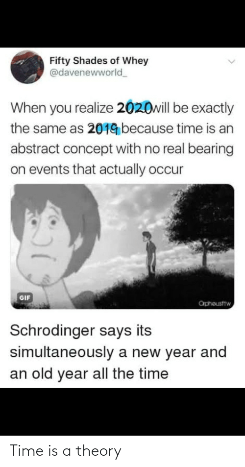 concept: Fifty Shades of Whey  @davenewworld  When you realize 2020will be exactly  the same as 2019 because time is an  abstract concept with no real bearing  on events that actually occur  GIF  aphousttw  Schrodinger says its  simultaneously a new year and  an old year all the time Time is a theory
