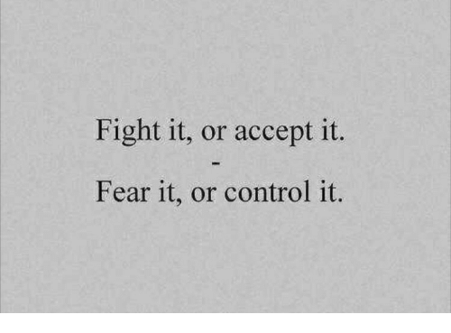 Fear It: Fight it, or accept it.  Fear it, or control it