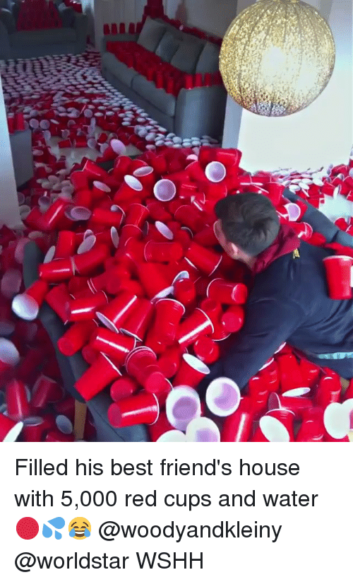 Friends, Memes, and Worldstar: Filled his best friend's house with 5,000 red cups and water 🔴💦😂 @woodyandkleiny @worldstar WSHH