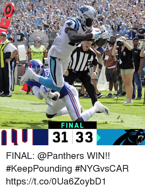 Memes, Panthers, and 🤖: FINAL  31 33 FINAL: @Panthers WIN!! #KeepPounding  #NYGvsCAR https://t.co/0Ua6ZoybD1