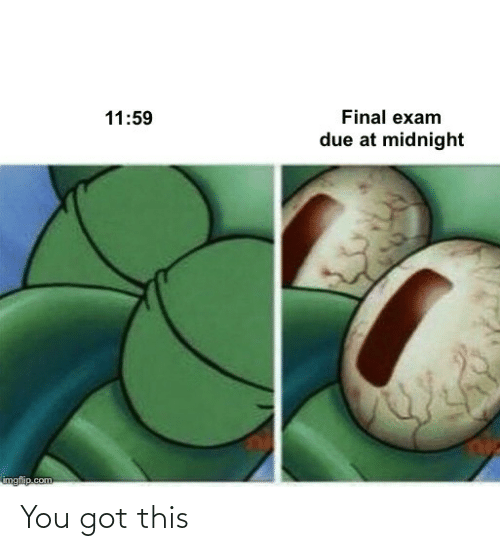 Got, Midnight, and Com: Final exam  11:59  due at midnight  imgflip.com You got this