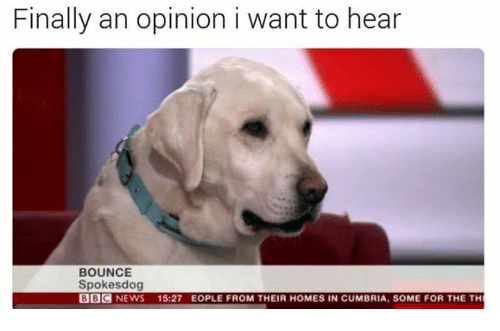 Bounc: Finally an opinion i want to hear  BOUNCE  Spokes dog  BBC  NEWS 15:27 EOPLE FROM THEIR HOMES IN CUMBRIA, SOME FOR THE TH