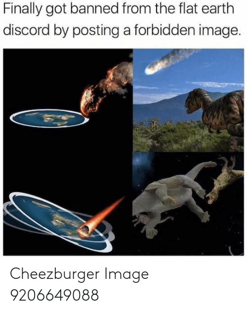 cheezburger: Finally got banned from the flat earth  discord by posting a forbidden image. Cheezburger Image 9206649088