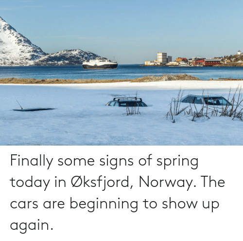 signs: Finally some signs of spring today in Øksfjord, Norway. The cars are beginning to show up again.