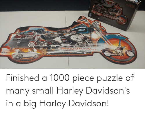 Harley: Finished a 1000 piece puzzle of many small Harley Davidson's in a big Harley Davidson!