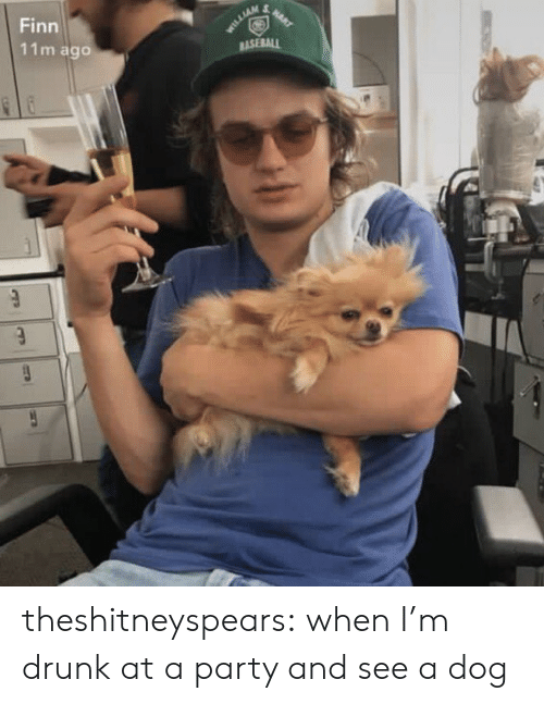 Baseball, Drunk, and Finn: Finn  11m ago  BASEBALL theshitneyspears:  when I'm drunk at a party and see a dog