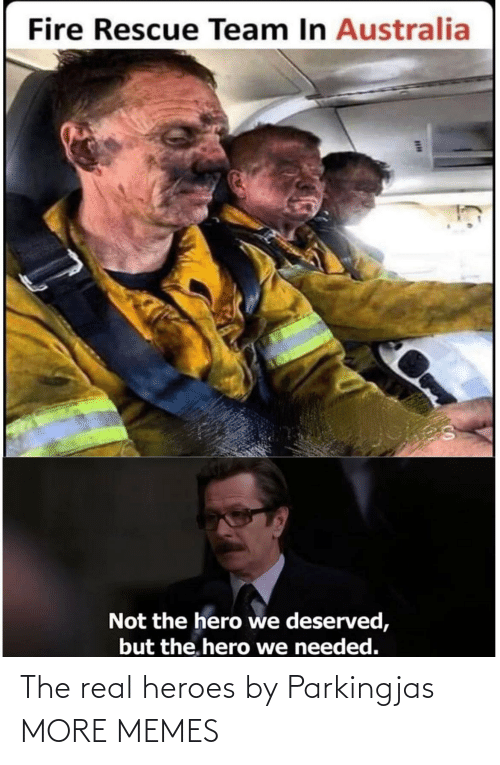team: Fire Rescue Team In Australia  Not the hero we deserved,  but the. hero we needed. The real heroes by Parkingjas MORE MEMES