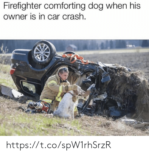 Memes, Firefighter, and 🤖: Firefighter comforting dog when his  owner is in car crash. https://t.co/spW1rhSrzR