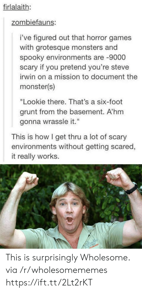 """grunt: firlalaith:  zombiefauns:  i've figured out that horror games  with grotesque monsters and  spooky environments are 9000  scary if you pretend you're steve  irwin on a mission to document the  monster(s)  """"Lookie there. That's a six-foot  grunt from the basement. A'hm  gonna wrassle it.""""  This is how I get thru a lot of scary  environments without getting scared,  it really works.  rocodile  unter This is surprisingly Wholesome. via /r/wholesomememes https://ift.tt/2Lt2rKT"""