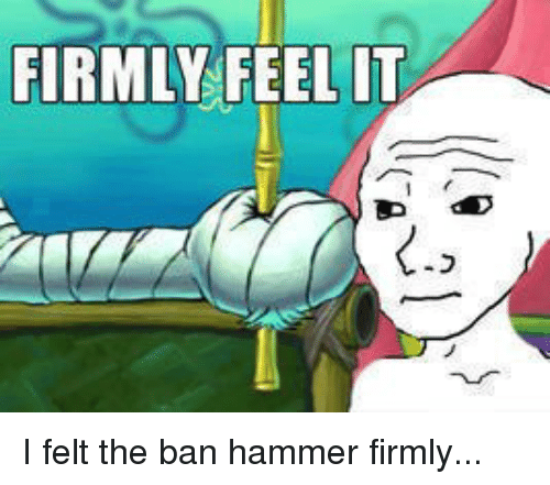 firmly feel it i felt the ban hammer firmly 1954720 firmly feel it i felt the ban hammer firmly dank meme on esmemes com