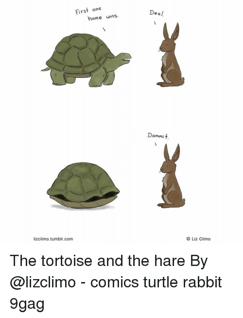 dea: First one  Dea /  home wins  Dammit.  lizclimo.tumblr.com  O Liz Climo The tortoise and the hare⠀ By @lizclimo⠀ -⠀ comics turtle rabbit 9gag