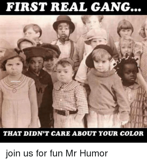 Memes, Gang, and 🤖: FIRST REAL GANG...  THAT DIDN'T CARE ABOUT YOUR COLOR join us for fun Mr Humor