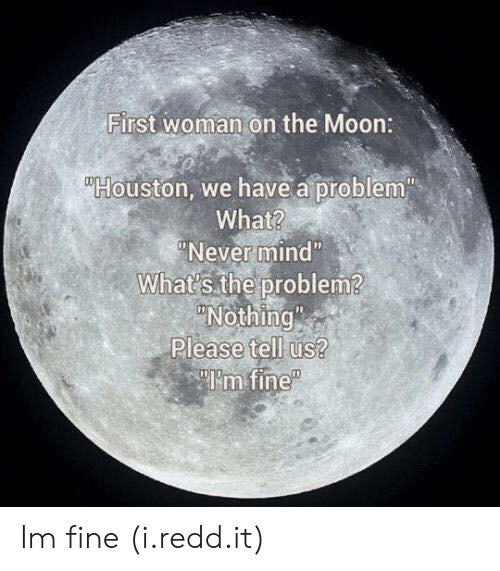 """Houston we have a problem: First woman on the Moon:  Houston, we have a problem""""  What?  Never mind""""  What's the problem?  Nothing  Please tell us?  """"I'm fine Im fine (i.redd.it)"""