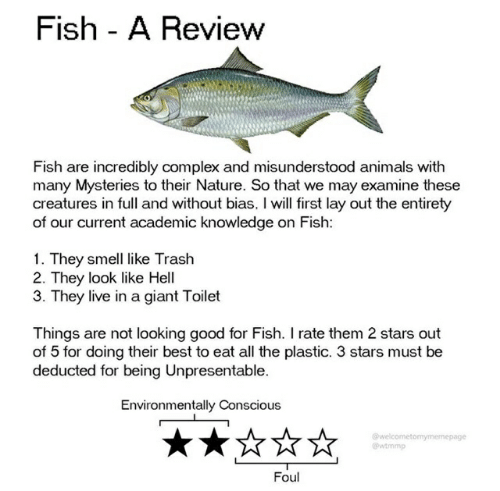 Animals, Complex, and Smell: Fish A Review  Fish are incredibly complex and misunderstood animals with  many Mysteries to their Nature. So that we may examine these  creatures in full and without bias. I will first lay out the entirety  of our current academic knowledge on Fish:  1. They smell like Trash  2. They look like Hell  3. They live in a giant Toilet  Things are not looking good for Fish. I rate them 2 stars out  of 5 for doing their best to eat all the plastic. 3 stars must be  deducted for being Unpresentable.  Environmentally Conscious  @welcometomymemepage  wtmmp  Foul