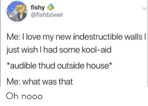Audible: fishy  @fishbowel  Me: I love my new indestructible wallsI  just wish I had some kool-aid  *audible thud outside house*  Me: what was that Oh nooo