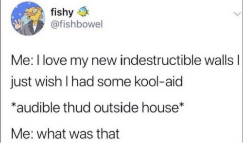 Audible: fishy  @fishbowel  Me: I love my new indestructible wallsI  just wish I had some kool-aid  *audible thud outside house*  Me: what was that