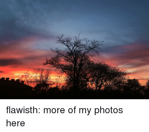 My Photos: flawisth:  more of my photos here