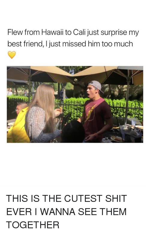 cali: Flew from Hawaii to Cali just surprise my  best friend, Ijust missed him too much THIS IS THE CUTEST SHIT EVER I WANNA SEE THEM TOGETHER