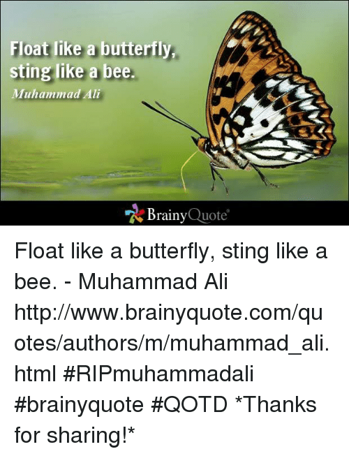 Float Like A Butterfly Sting Like A Bee Muhammad Ali Brainy Quote