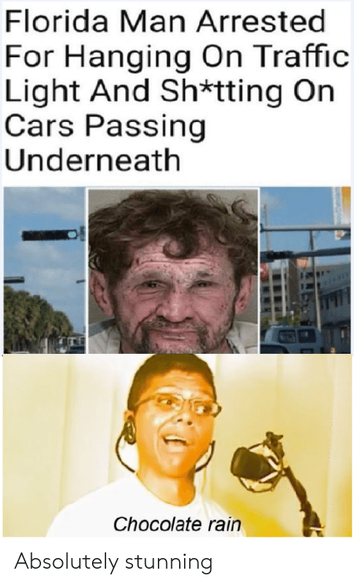 Cars, Florida Man, and Traffic: Florida Man Arrested  For Hanging On Traffic  Light And Sh*tting On  Cars Passing  Underneath  Chocolate rain Absolutely stunning