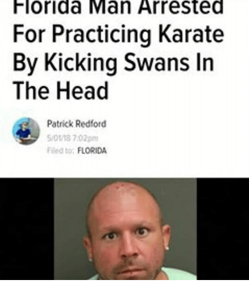 Florida Man, Head, and Florida: Florida Man Arrested  For Practicing Karate  By Kicking Swans In  The Head  Patrick Redford  5/0118 7:02pm  Fed to: FLORIDA