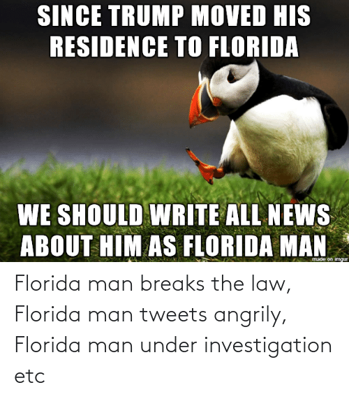 Florida: Florida man breaks the law, Florida man tweets angrily, Florida man under investigation etc