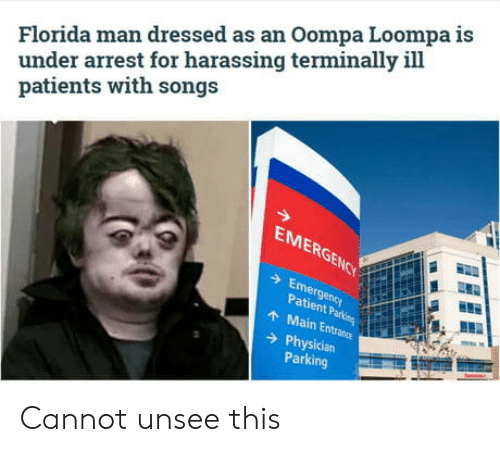 arrest: Florida man dressed as an Oompa Loompa is  under arrest for harassing terminally ill  patients with songs  EMERGENCY  Emergency  Patient Parking  AMain Entrance  Physician  Parking Cannot unsee this