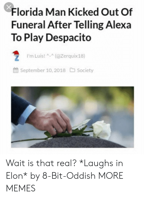 Dank, Florida Man, and Memes: Florida Man Kicked Out Of  Funeral After Telling Alexa  To Play Despacito  ZI'mLuis!(@Zerquix18)  September 10, 2018 Society Wait is that real? *Laughs in Elon* by 8-Bit-Oddish MORE MEMES